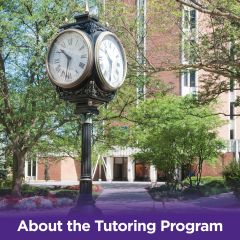 About the Tutoring Program