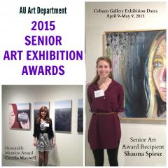 Senior Art Ex Awards 2015