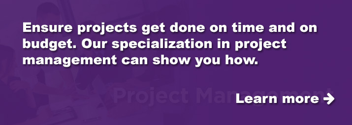 Ensure projects get done on time and on budget.