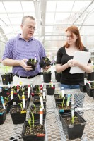 Ashland - Professor and Student in Greenhouse