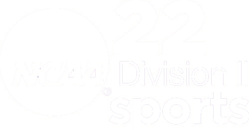 22 Division II Sports Icon